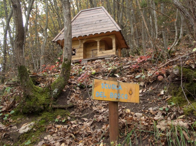 la scuola del bosco bf