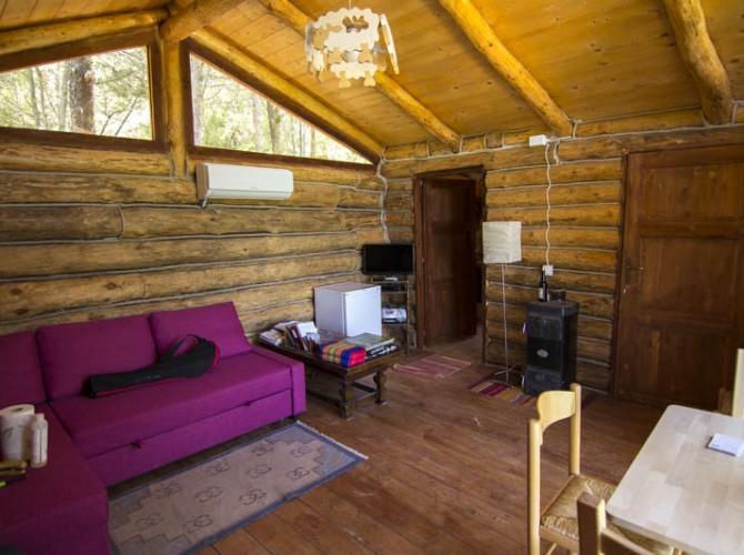 Casa_nel_bosco_12