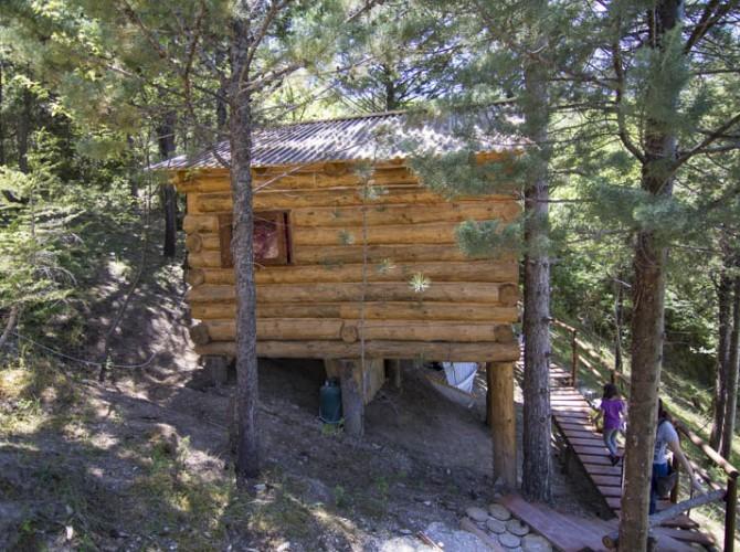 Casa_nel_bosco_6